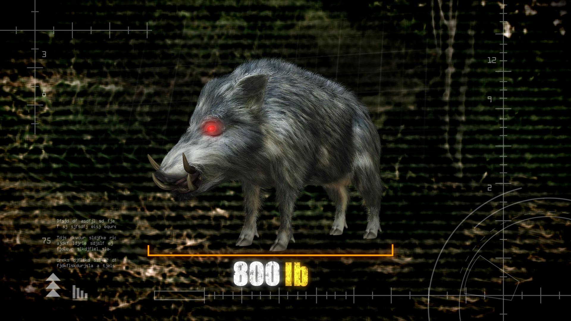 Hogs Gone Wild